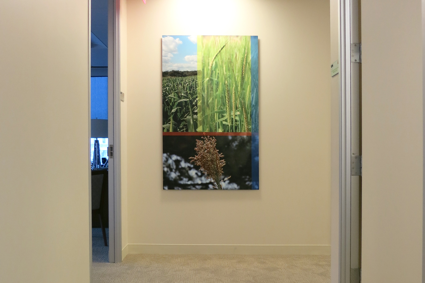 Another custom collage at the end of a corridor.