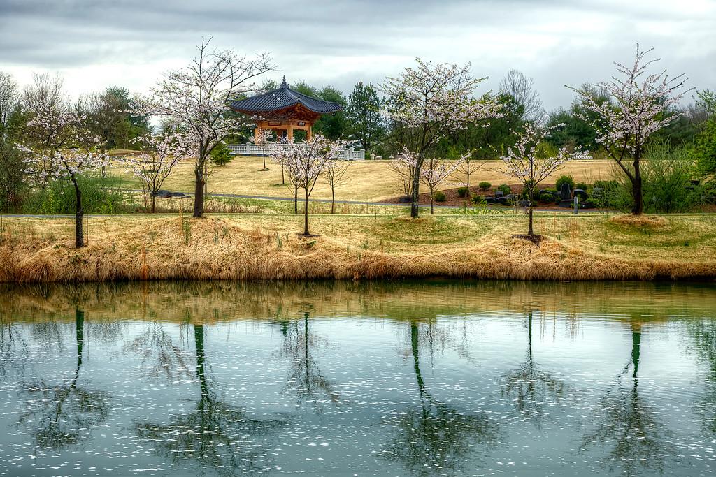 angelapan_meadowlark-botanical-garden-korean-temple-XL.jpg