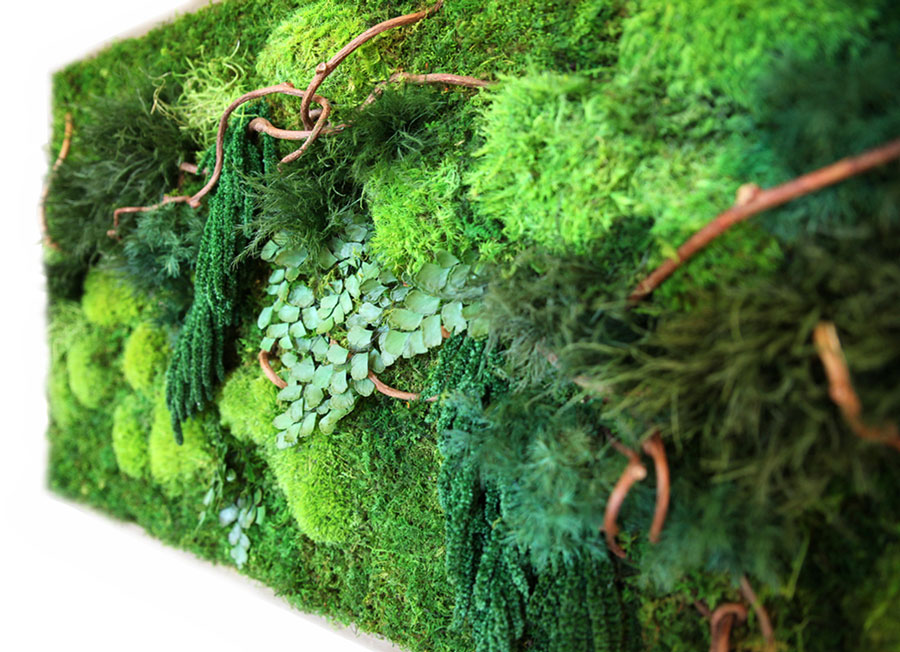 Check out this close-up detail of the moss - it is just as textural and soft as it looks!