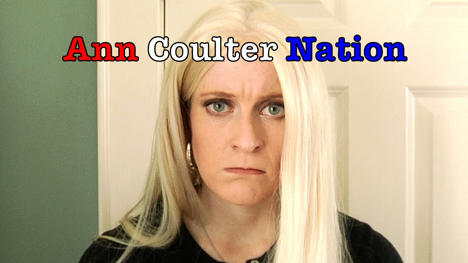 Ann Coulter Nation (web series)