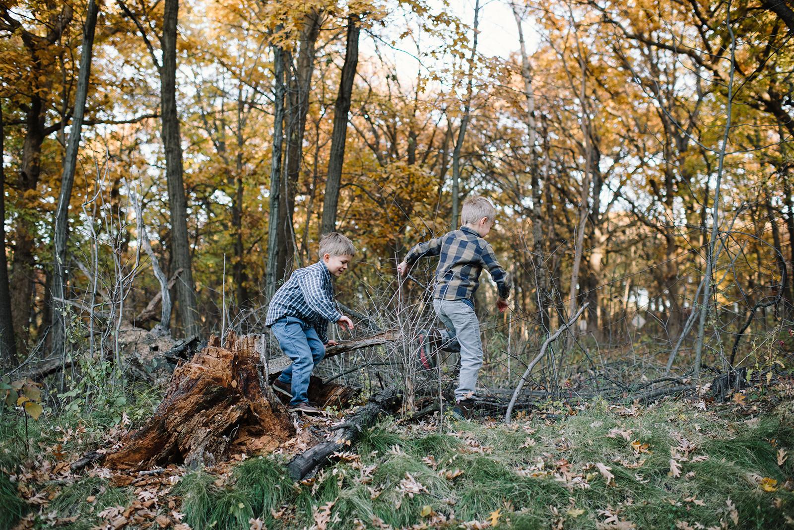Woods-3.jpg