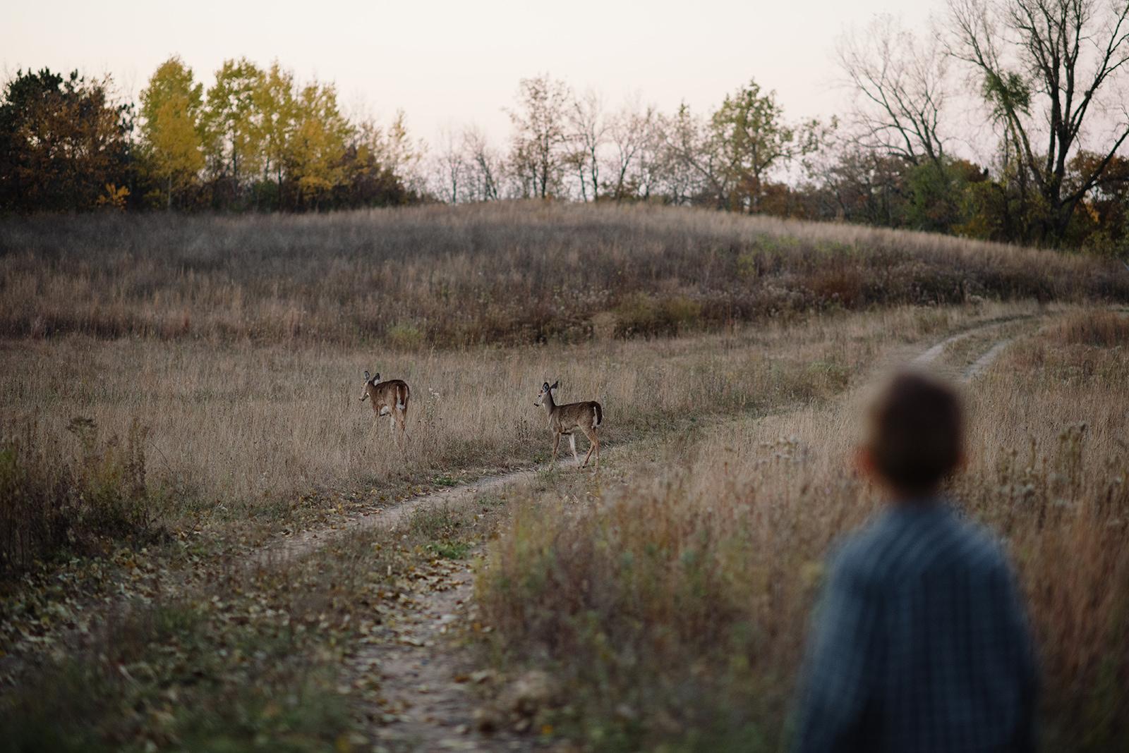 Prairie-235.jpg