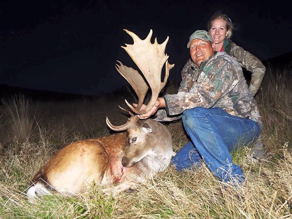 Deer - Graham Jenson.jpg
