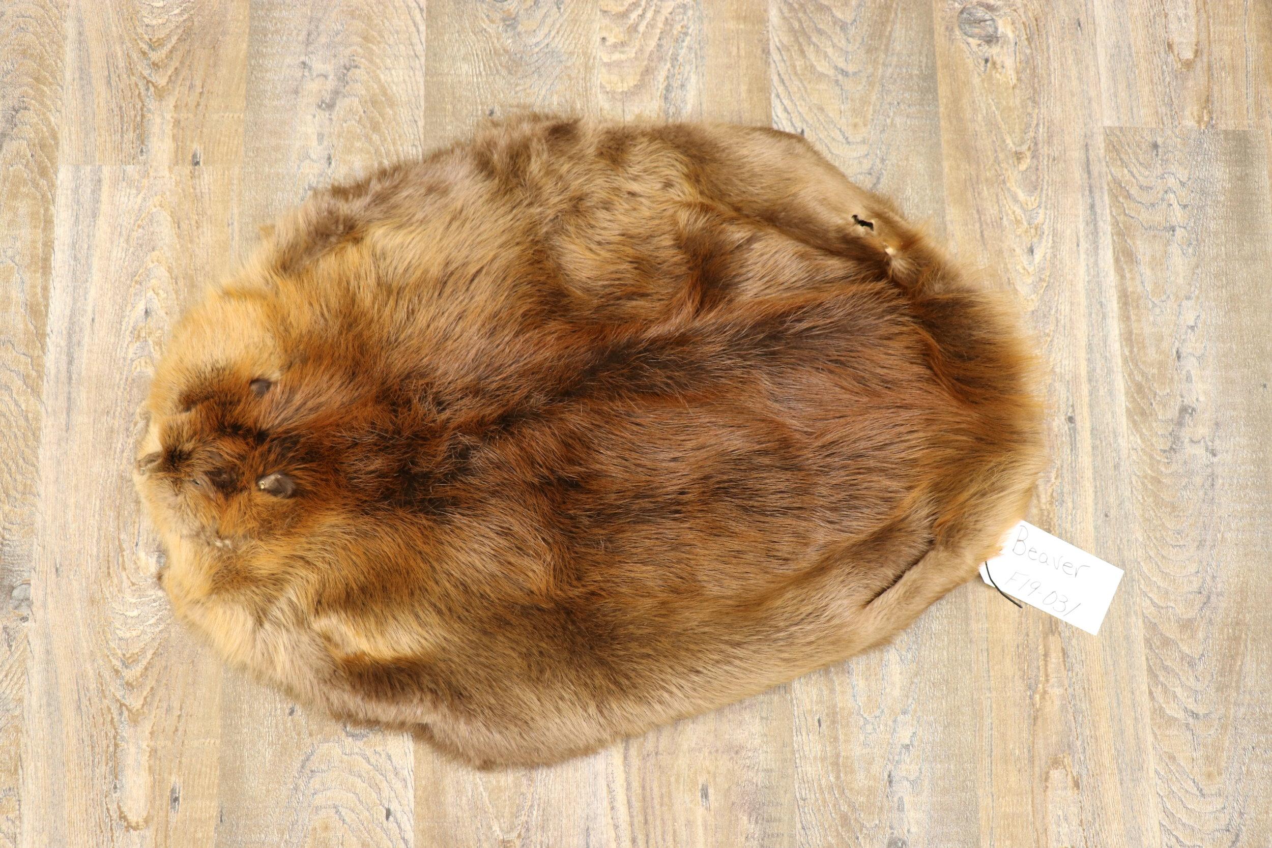 Beaver Flat Tan