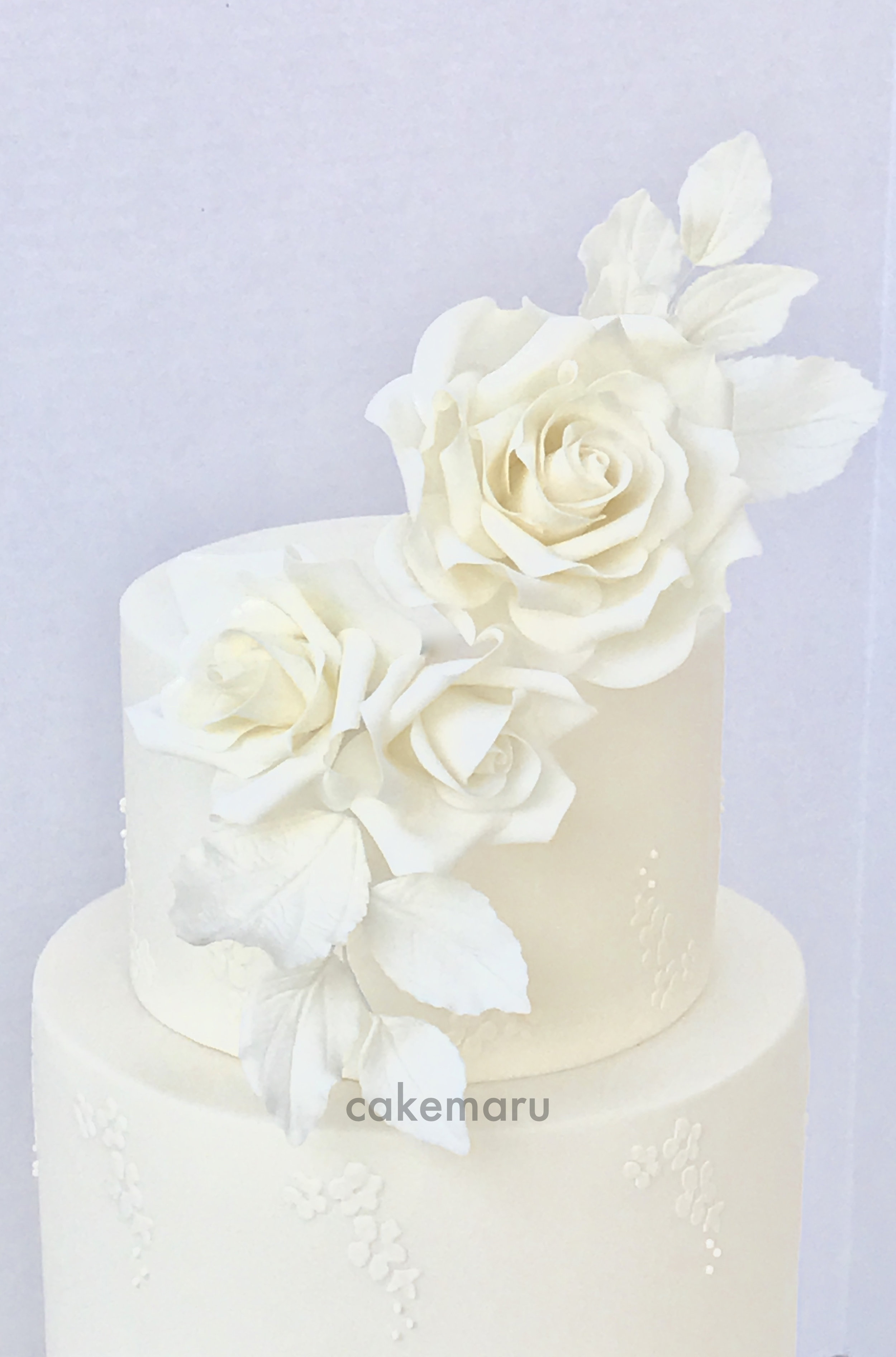 White Rose and Pleats 2.jpg