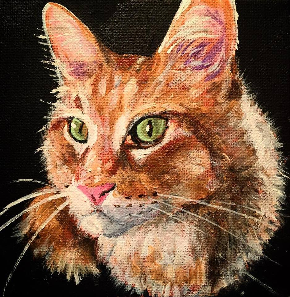 "Tabby, 8"" x 8"" acrylic on canvas (2018)"