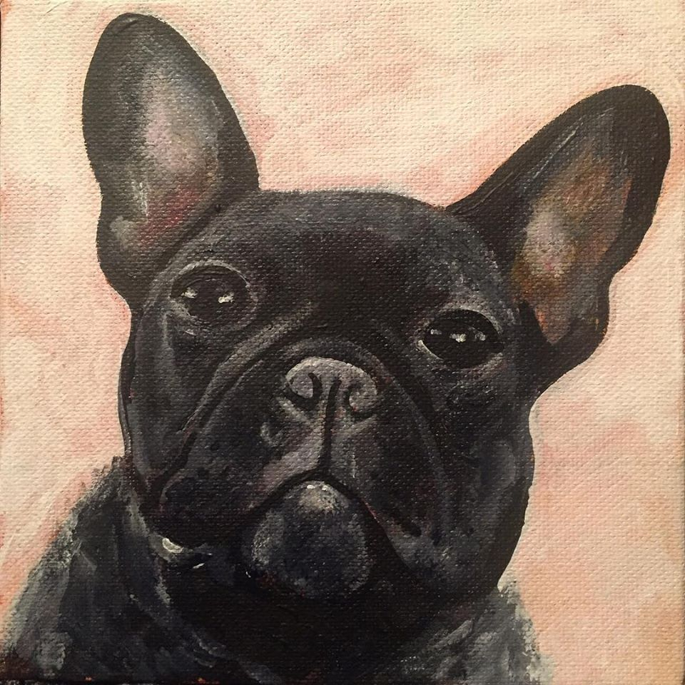 "Black Pug, 6"" x 6"" acrylic on canvas (2018)"
