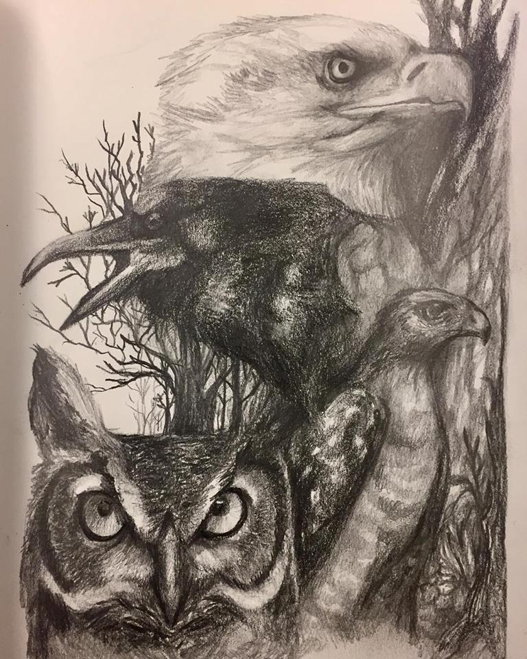 Wildlife, graphite on paper (2018)