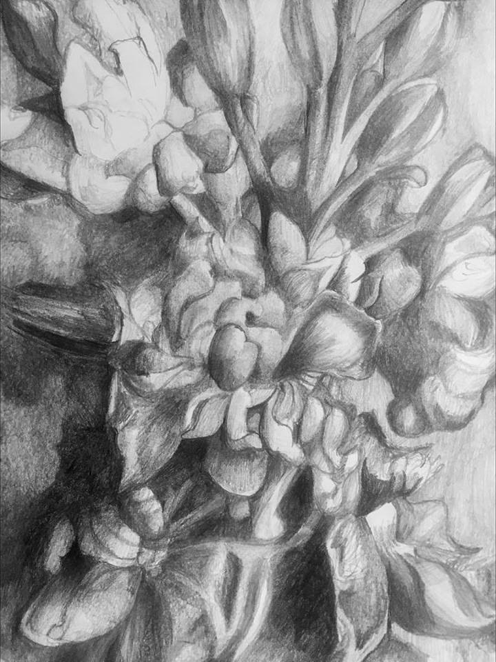 Floral Up Close, graphite on paper (2019)