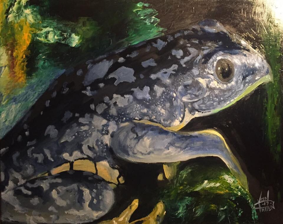 """""""Blue Frog"""" 16"""" x 20"""" Oil on Canvas (2018)"""