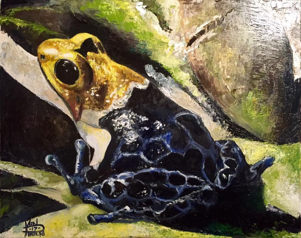 """""""Yellow Frog"""" 16"""" x 20"""" Oil on Canvas (2018)"""
