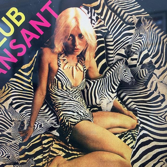 Black and white striped blondie for KLUB Dansant. Tomorrow oct 3rd @inhetkoorenhuis #wildegeesten #wildebeesten #graphicdesign #artwork #prikmedia #prikmedia📍