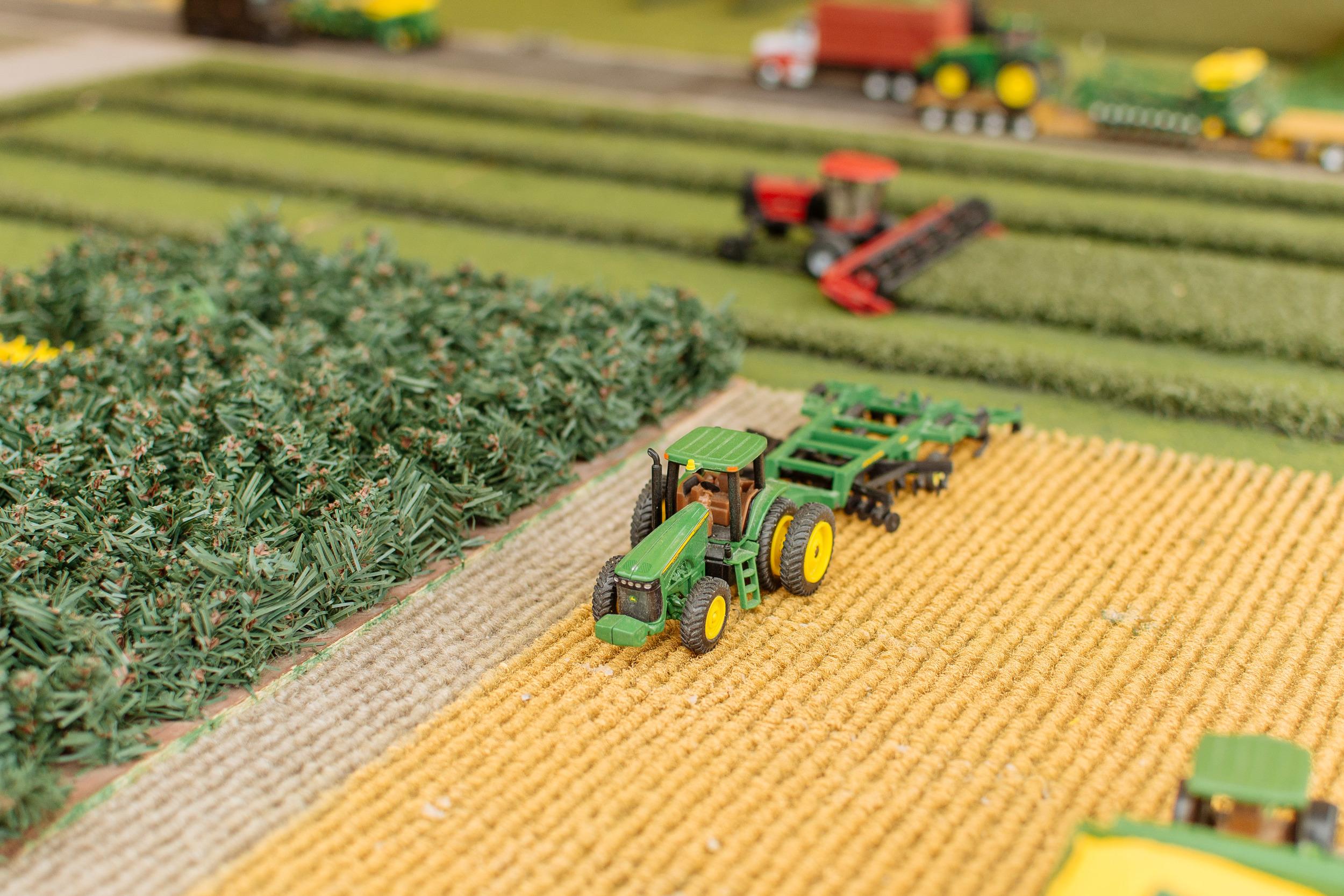 farm-15.jpg
