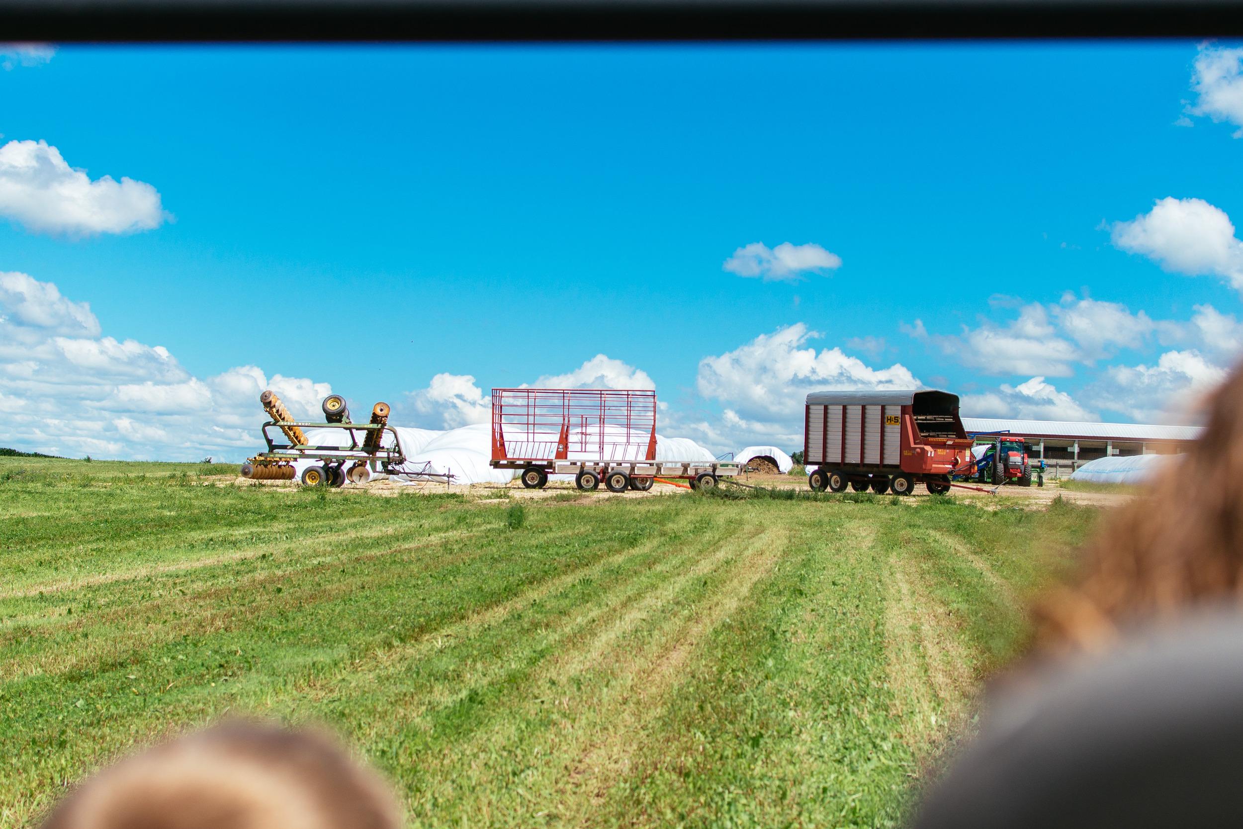 farm-25.jpg