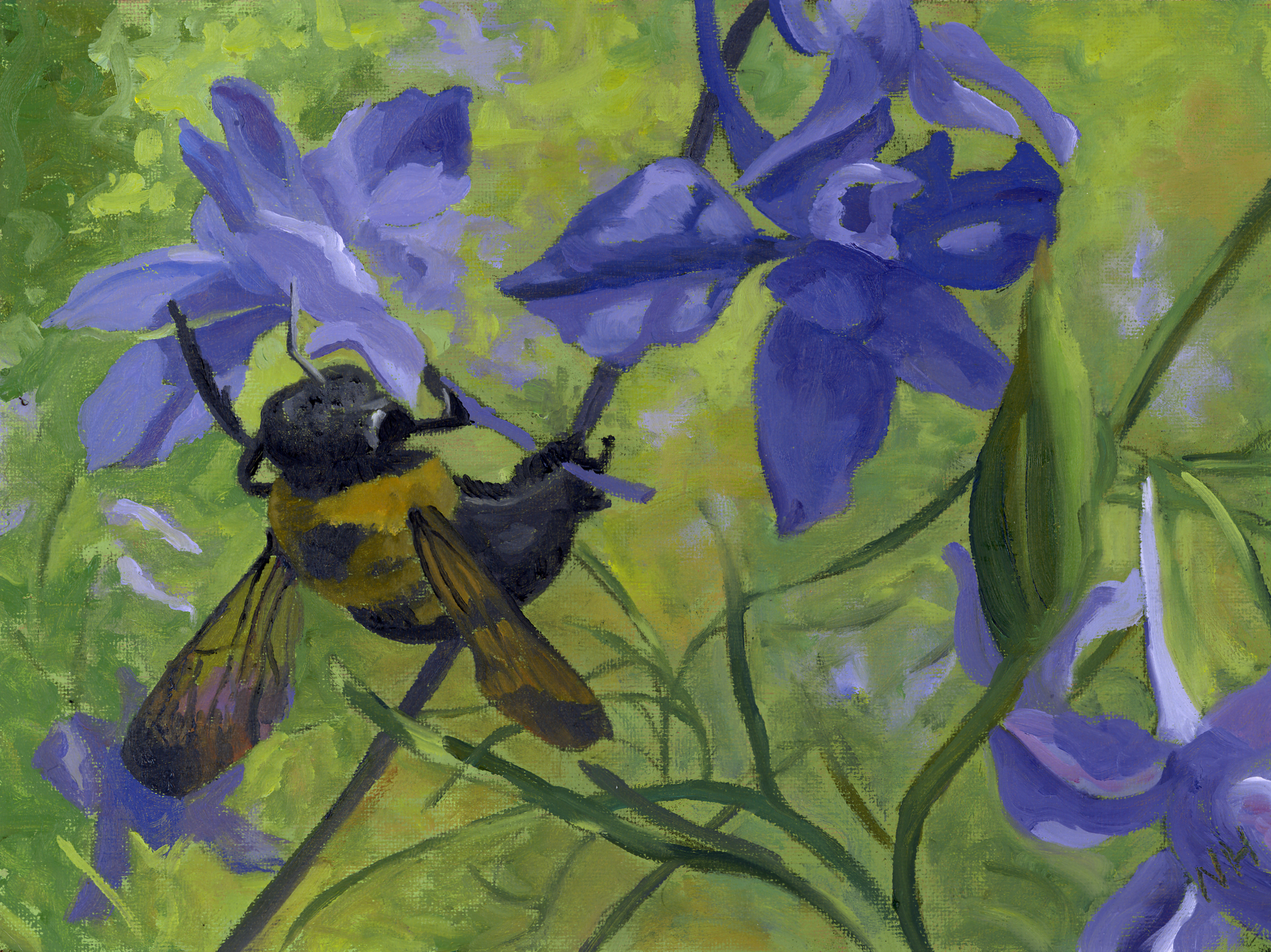 bee and larkspur.jpg