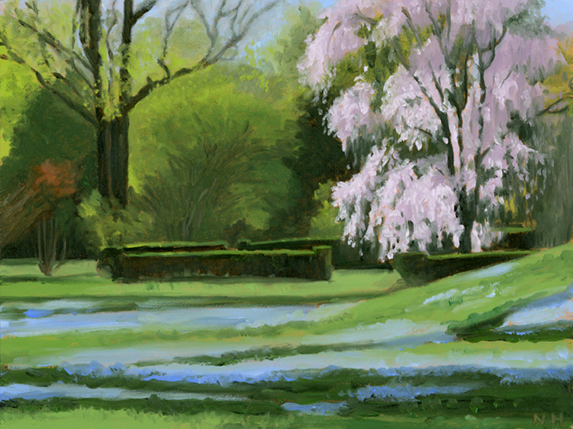 weeping cherry and veronica 2012.jpg