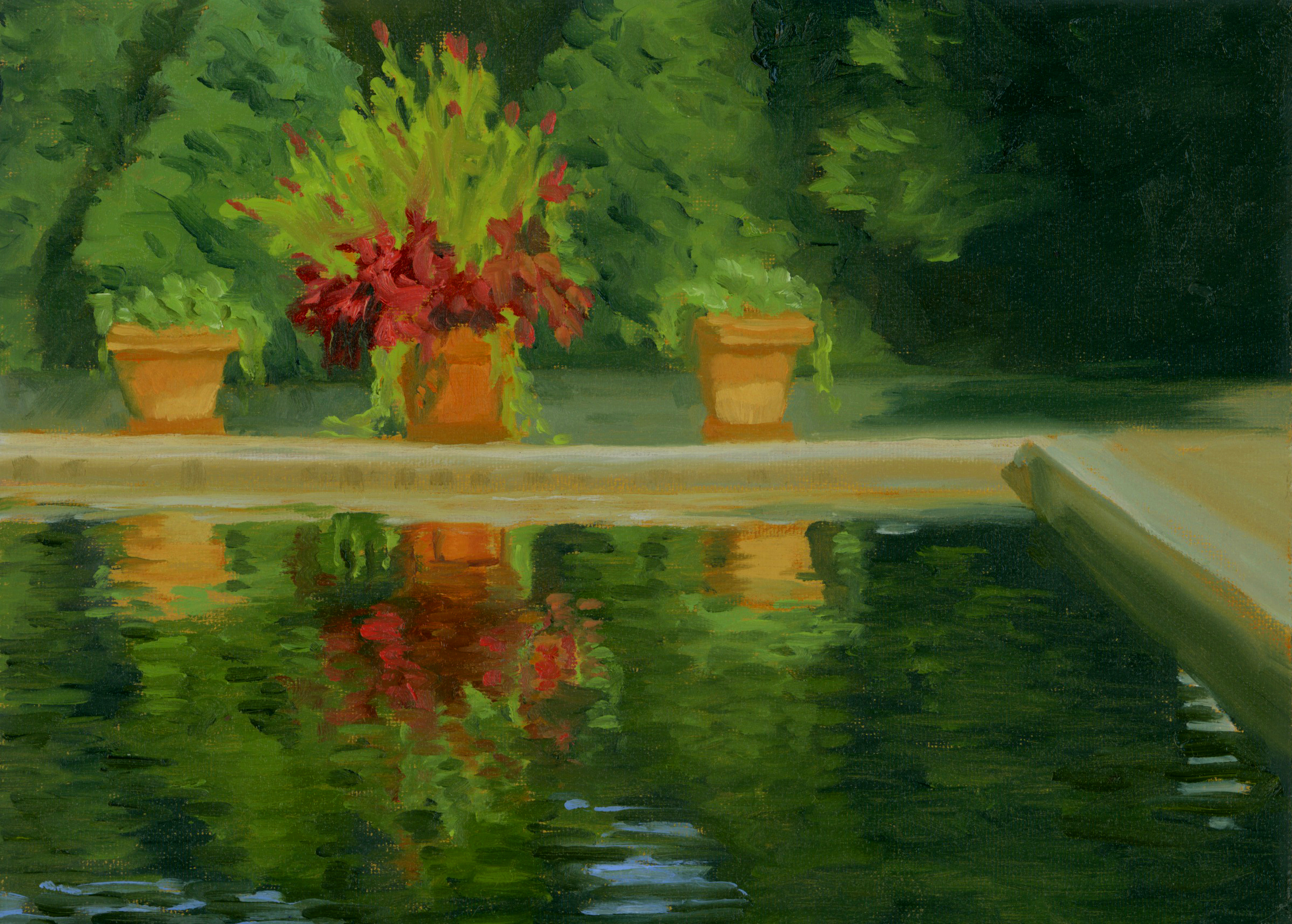 Pool Reflections.jpg
