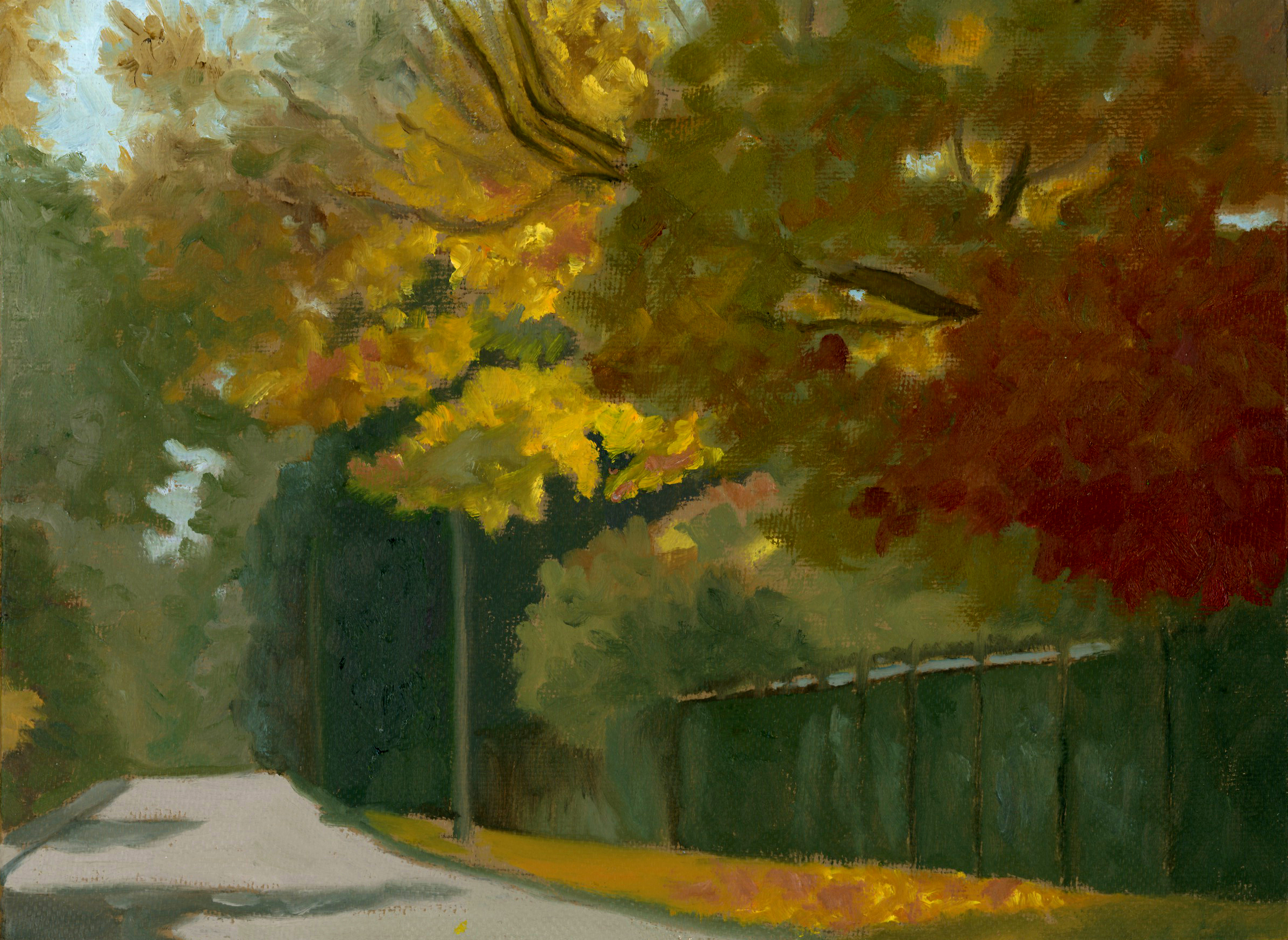 Empty Street in Autumn.jpg