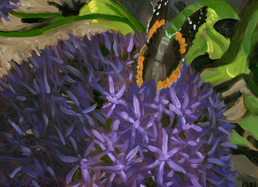 Allium and Butterfly.jpg