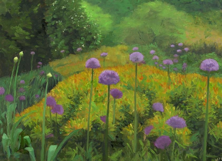 Allium and spirea.jpg