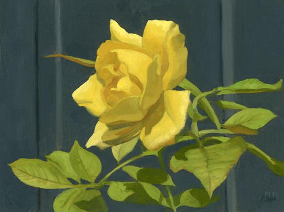 Last rose of summer.jpg