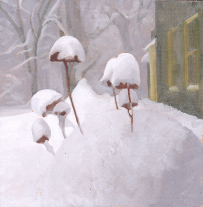 Plants in snow SMALL.jpg