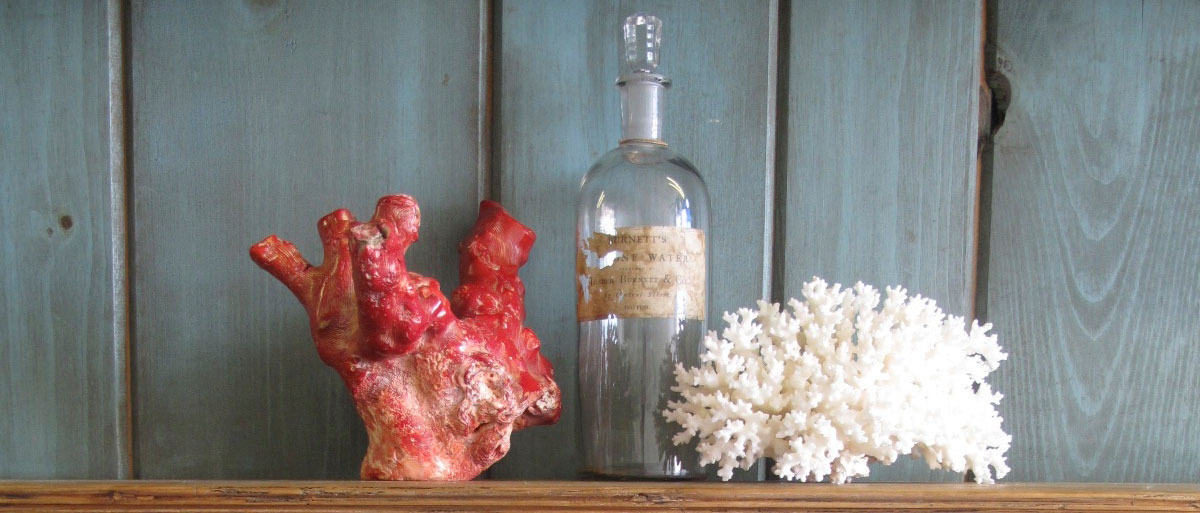 A Very Large and Antique Piece of Red Coral available for sale Van Royen