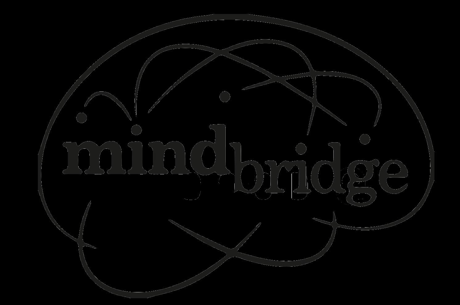 4.Mindbridge-Black.png