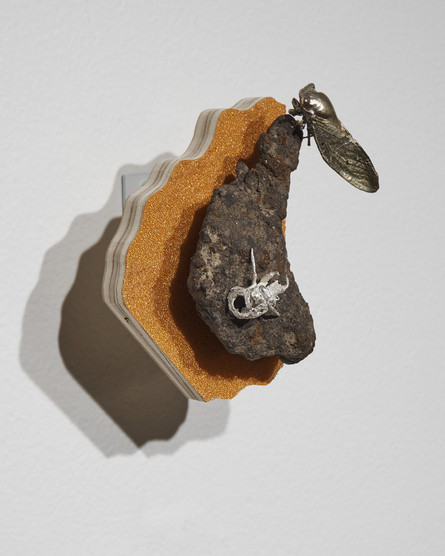 Cicada-Iron2.jpg