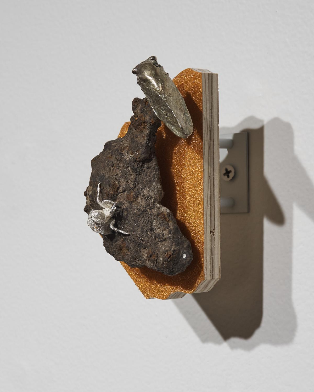 Cicada-Iron3.jpg