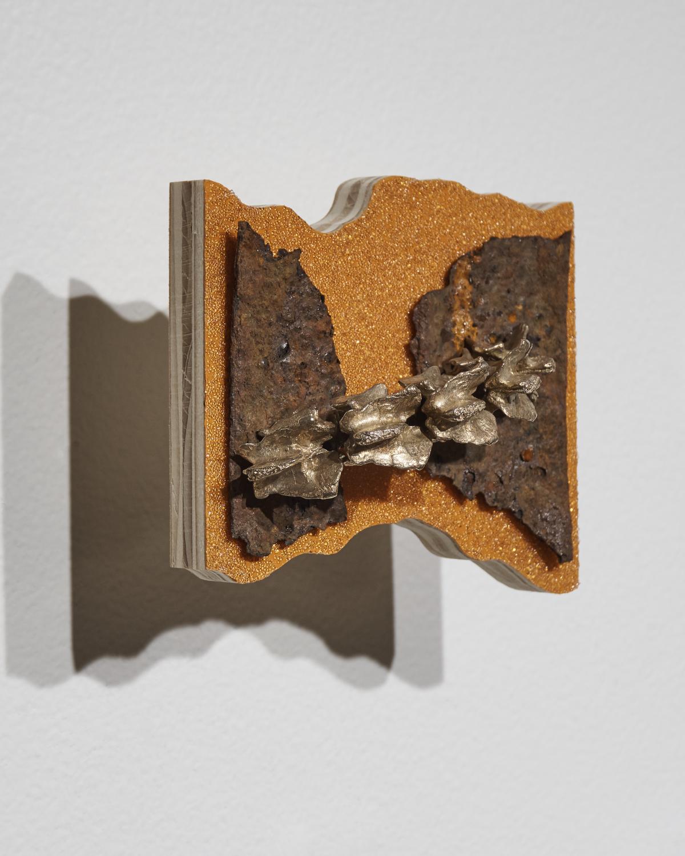 Vertebrae-Rust2.jpg