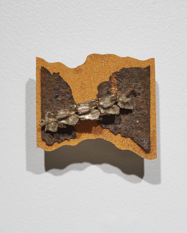 Vertebrae-Rust1.jpg