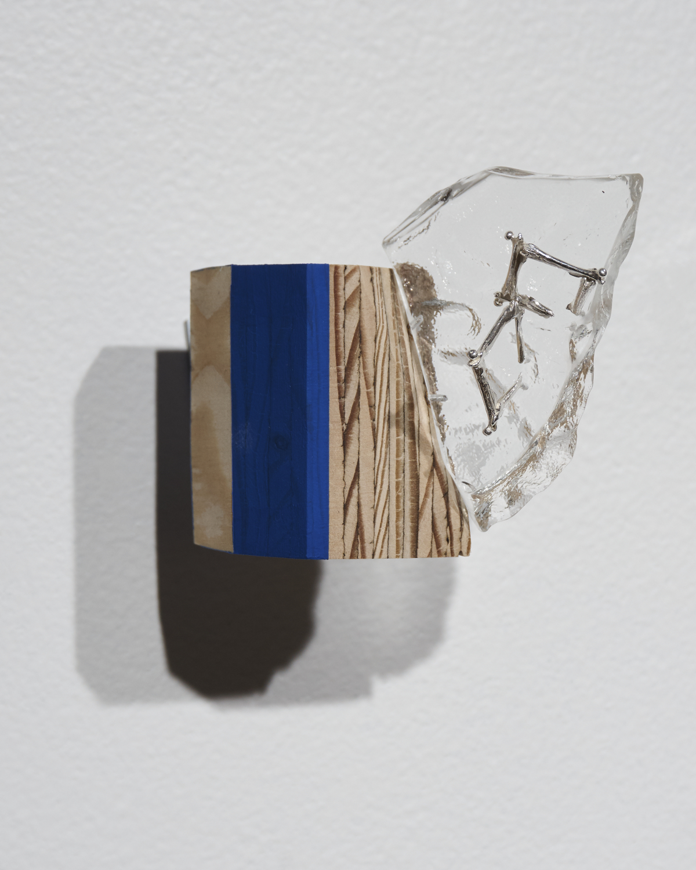 Femurs-Glass2.jpg
