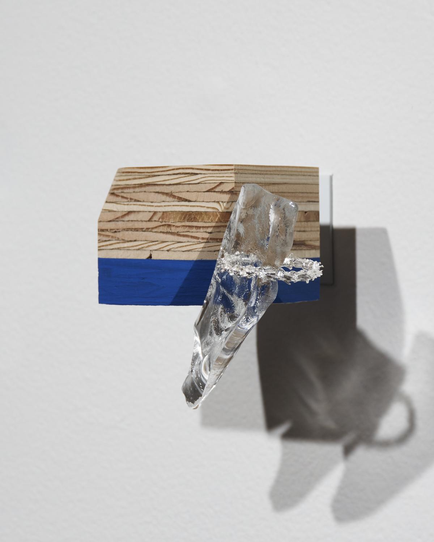 Vertebrae-Glass3.jpg