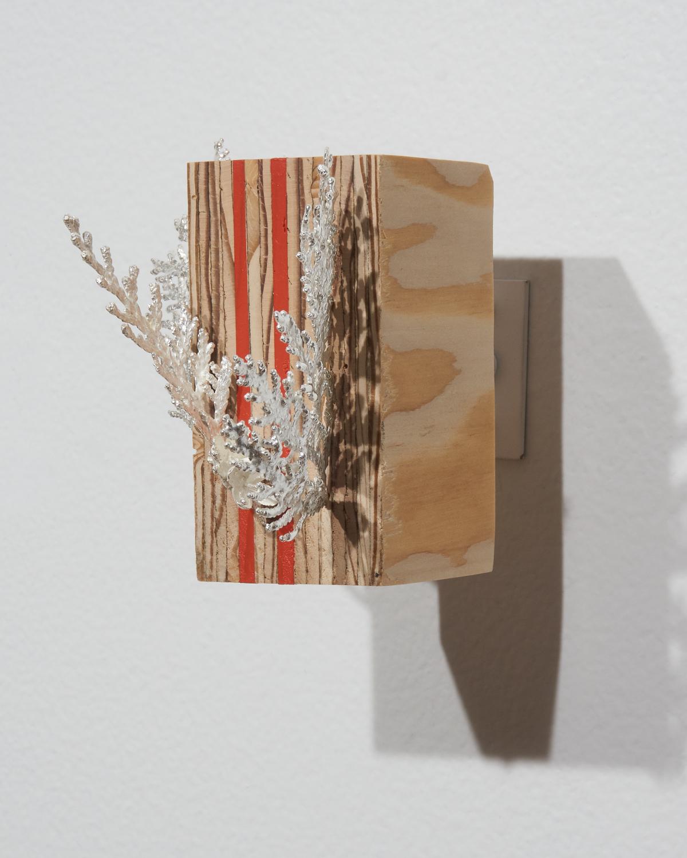 Cedar-Plywood2.jpg