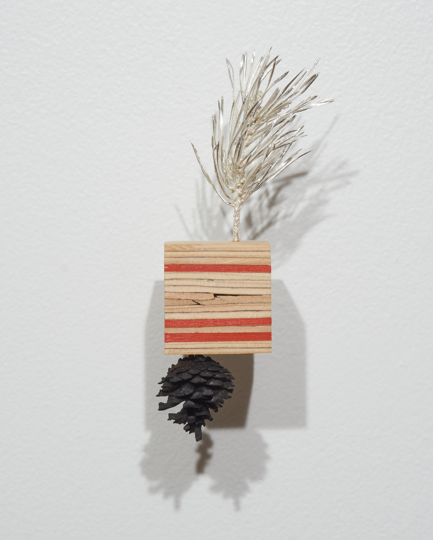 ArtifactsEcofacts-Pine.jpg