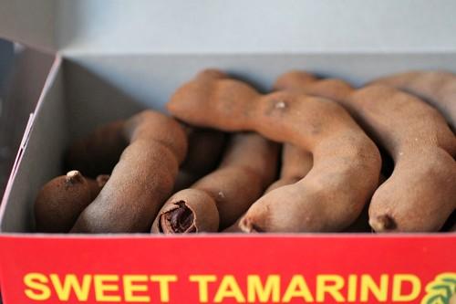 tamarind-pic1-500x333.jpg
