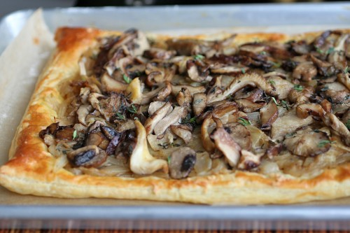 mushroom-pic3-500x333.jpg