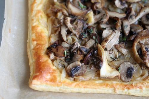 mushroom-pic5-500x333.jpg