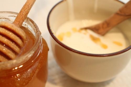 yoghurt-pic1-500x333.jpg