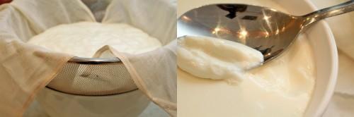 yoghurt-pic3-500x166.jpg