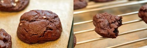 mint-cookie-pic4-500x166.jpg