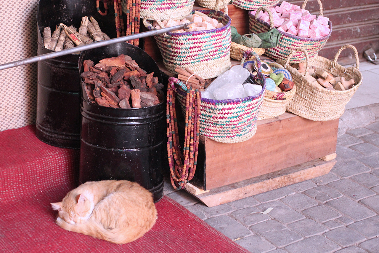 morocco 6.jpg