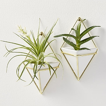 Set of 2 Trigg Small Wall Vases  | CB2