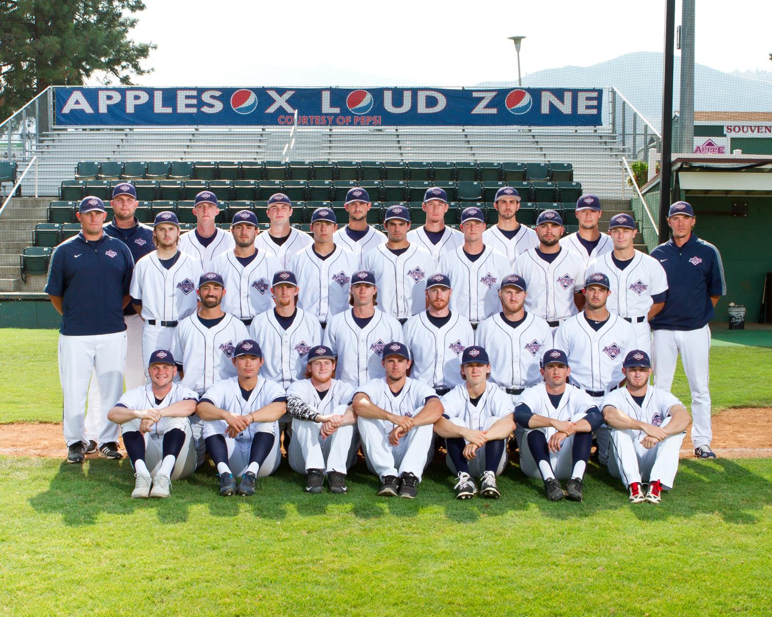 The 2015 AppleSox finished 24-30 in WCL play, and were 27-31 overall.