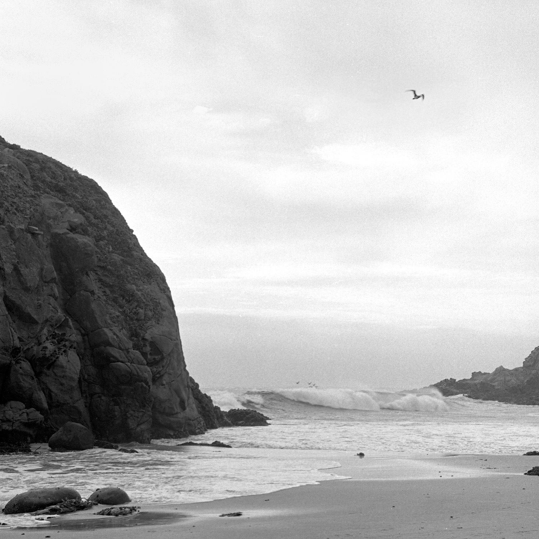 Big Sur 2.5.jpg