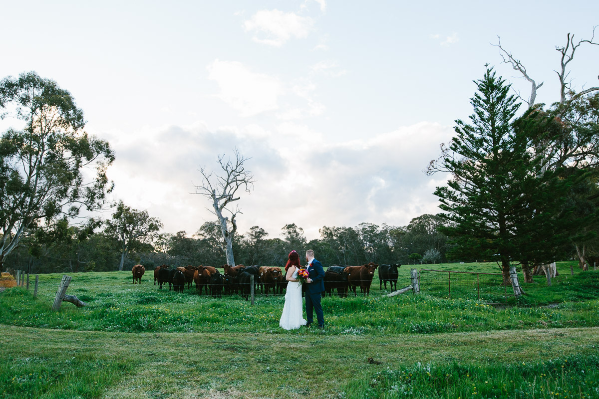 Jess and Luke-farm wedding-93.jpg