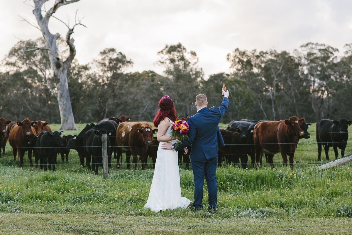 Farm wedding - Pinjarra.jpg