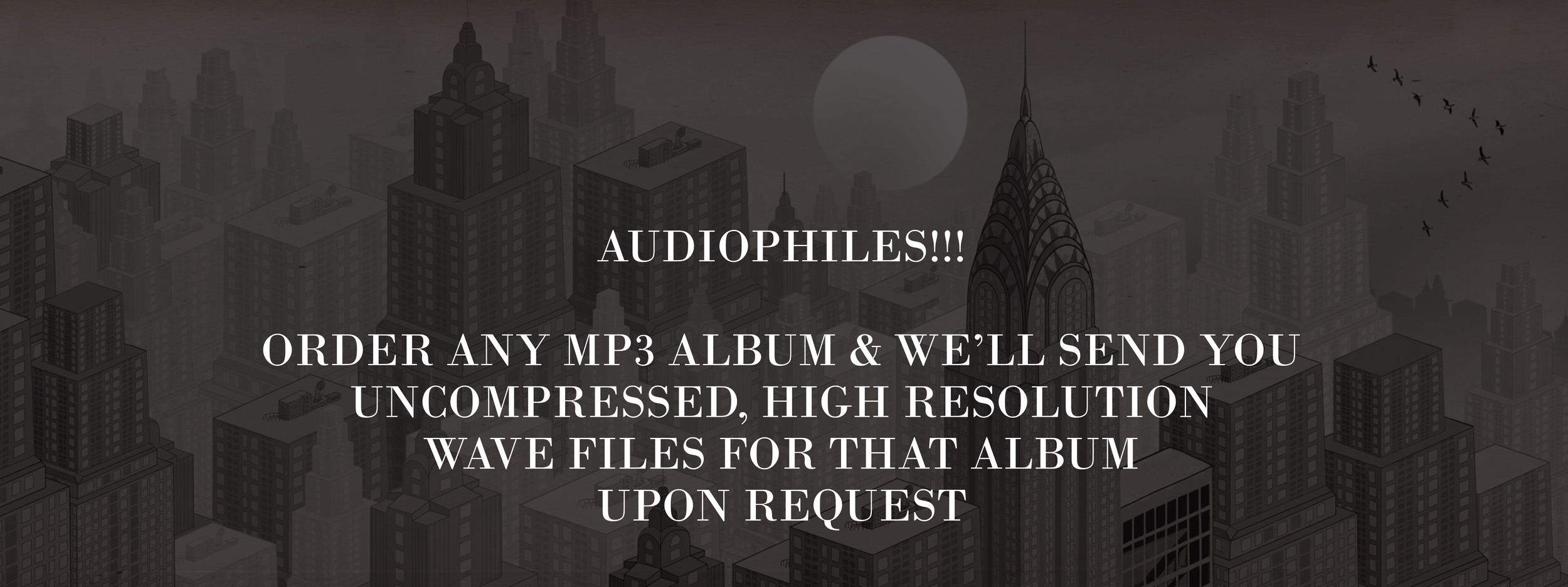Audiophiles banner with Text 002.jpg