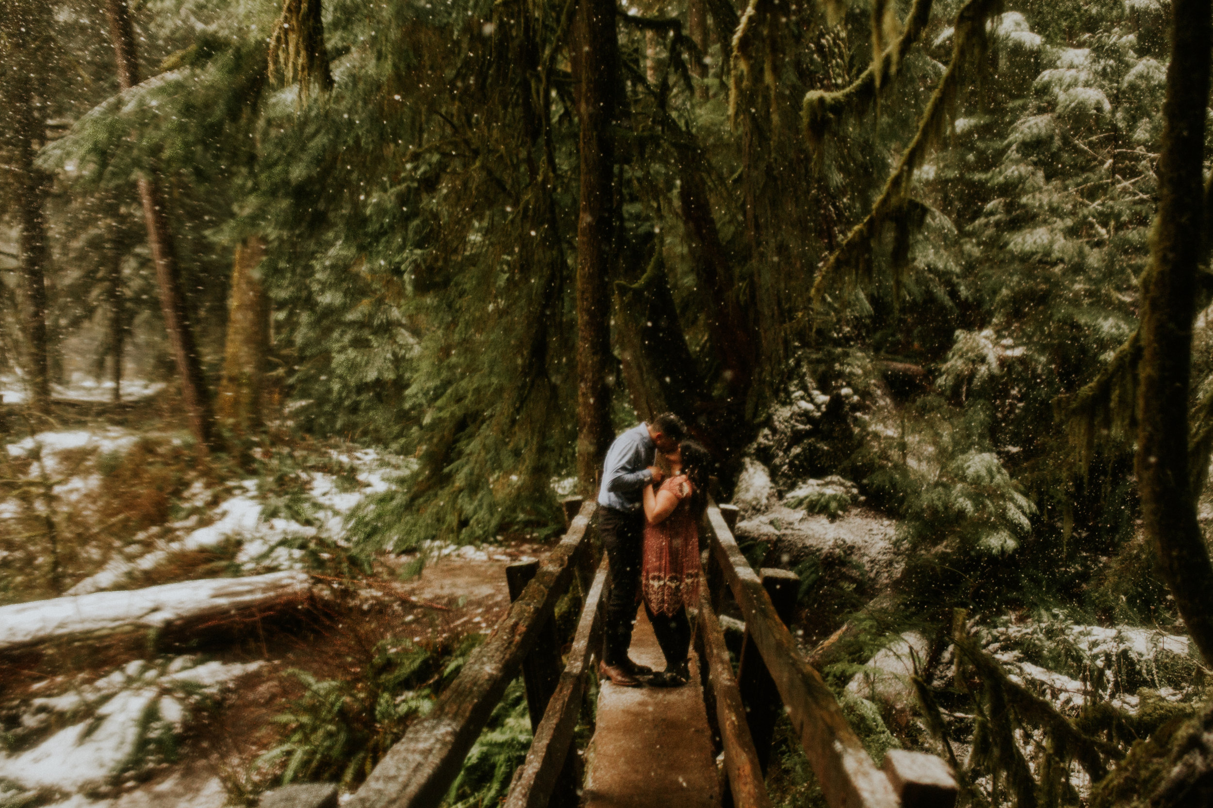 olympic national park engagement photos by BreeAnna Lasher